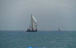 Campionato regionale di vela d'altura: Profilo vince di misura su Vela Azzurra II